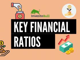 Key Financial Ratios - fundamental analysis